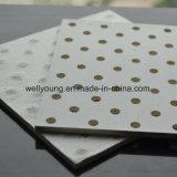 Ядровые омертвляя Perforated плитки потолка MGO