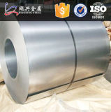 La Cina Hot Sale Competitive Zinc Aluminum Steel Sheet e Coil