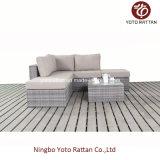 Il piccolo sofà del rattan esterno ha impostato (1401)
