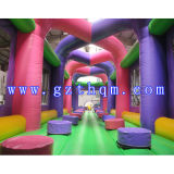 Giant Ant Runway Inflatable Sport Game Cours d'obstacle / Obstacle Course for Kids