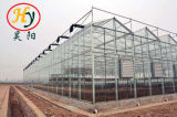 Agriculture Multi-Span Tempered Glass Green House with Hydroponics Stsyem