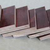 海洋の合板の黒かブラウンのフィルムは建築材のための合板シートに直面した