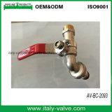 一義的なデザイン熱い販売の真鍮の庭の蛇口の蛇口