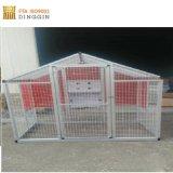 La capa de la jaula de pollo a la venta
