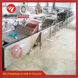 在庫の大きい容量の野菜フルーツの洗浄の白くなる機械