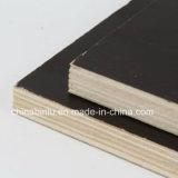 La película de alta calidad de primera clase se enfrentan la madera contrachapada de color marrón y negro/Film enfrenta la madera contrachapada