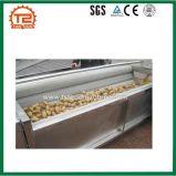 Machine directe de pommes chips d'acier inoxydable d'usine automatique