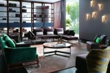 Heißer Verkaufs-modernes ledernes Sofa eingestellt mit erstklassigem (Ms1308