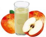 Het Concentraat van de Puree van de appel