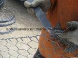 Rete metallica esagonale galvanizzata della maglia di Gabion