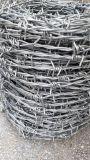 機械を作る電流を通された有刺鉄線