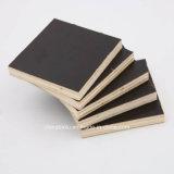 La buena calidad y la madera contrachapada barata de la cara de la película del negro del precio/la película grande de la talla hicieron frente a la madera contrachapada