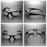 Lunettes protectrices de verres de sûreté de lentille de PC avec les garnitures d'EVA (SG132)