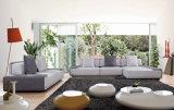 Modèle réglé de sofa neuf simple de type de mousse de tissu de bâti en métal