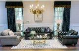 Combinazione classica senza tempo del sofà del cuoio & del fabbricato (BM-4)