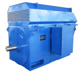 Iec Standard High Voltage Electric Motor 1250kw-4-10kv