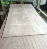 Лист переклейки Veneer Okoume твёрдой древесины тополя оптовой цены полный