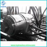 Moteur hydraulique pour faucheuse à tambour rotatif