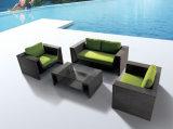 フォーシャンの工場熱い販売法の藤の庭の家具
