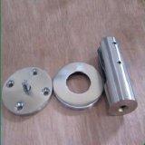Zipoli di vetro della scala del pezzo fuso dell'acciaio inossidabile (montaggio del corrimano)