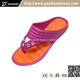 L'arancio casuale di cadute di vibrazione delle donne comode di estate calza 20244