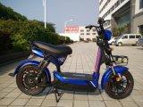 500W電気バイクのMomantumベトナムのモデル熱い販売