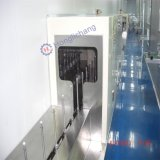 Conveyer System in Automatic Painting Seedling