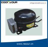 De Compressor van de Ijskast van de Koelkast van Coolsourdc 12V 24V voor Gas R134A