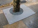 Square e as grades de árvore retangular e embelezadores de Árvore