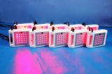 Mini laser de Lipo de diodes de Lipolaser 650nm 25 /36 amincissant la machine pour l'usage à la maison