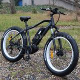 Cer Approvaled 26*4.0inch fettes E-Fahrrad mit Lithium-Batterie