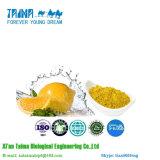 Polvo orgánico natural 100% del limón del polvo del limón de la oferta de la fábrica de la ISO con el mejor precio