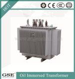 Due trasformatori di potere a bagno d'olio d'avvolgimento a tre fasi ad alta tensione 10kv
