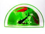 Tanque de peixes acrílico desobstruído Aquaium do Semicircle