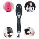 Вводить жару в моду Hairdryer инструментов выправляя щетку волос