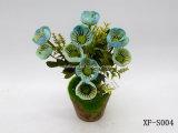 Pavot artificiel/en plastique/en soie Bush (XF-S004) de fleur