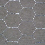 Acoplamiento de alambre hexagonal galvanizado 3/4' del pollo de 1/2' X 0.4m m