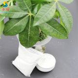 Microcrystalline Cellulose 101 Mcc Poeder CAS: 9004-34-6