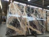 Черный джунглей мраморные плитки и мраморным полом&Walling