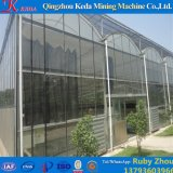 Парник поставкы фабрики Китая стеклянный с Hydroponic системой