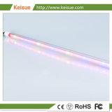 Keisue LED de amplio espectro de luz cada vez mayor para el hogar siembra