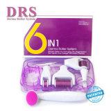 Nieuwe 6 in 1 van de Micro- van de Naald Uitrusting Rol van Derma Drs. Microneedle Skin Scars Therapy met het Medische Roestvrij staal van de Rang