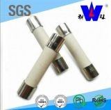 High Quality Low Voltage Resisitor DC AUTO Thermal Fuse