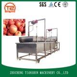 Lavatrice della verdura e della frutta con il generatore di Onzone