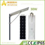 30W PIR 센서를 가진 1개의 LED 태양 가로등에서 보장 5 년 30W 전부