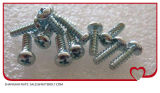 セルフ・タッピングねじステンレス鋼304 316 DIN7981 DIN7982の小ネジ、自己の鋭いねじ