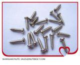 Acier inoxydable de vis $parker 304 316 DIN7981 DIN7982, vis de machine, vis Drilling d'individu