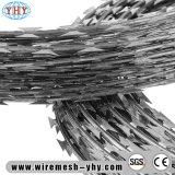 かみそりによって電流を通される有刺鉄線、かみそりの有刺鉄線