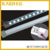 5050의 볼트 작풍 내각 LED 엄밀한 빛 또는 방수 LED 지구 빛