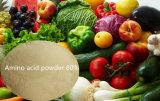 Polvere 80% dell'amminoacido di origine vegetale per fertilizzante organico